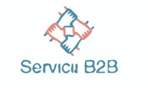 Servicii B2B